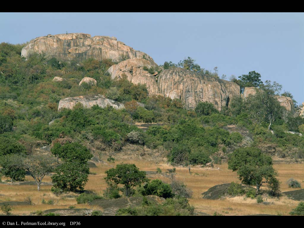 [Image: Microhabitat_variation_Serengeti_Tanzania_DP36.jpg]