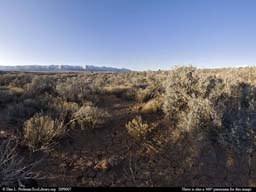 Panorama of Sagebrush scrub habitat in Colorado